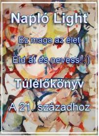 Haidey - Napló Light