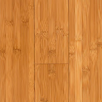 Bamboo Floors1