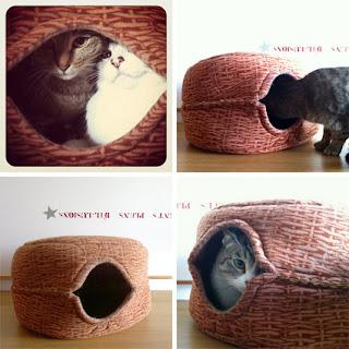 5 Camas que Puedes Hacer para tus Mascotas