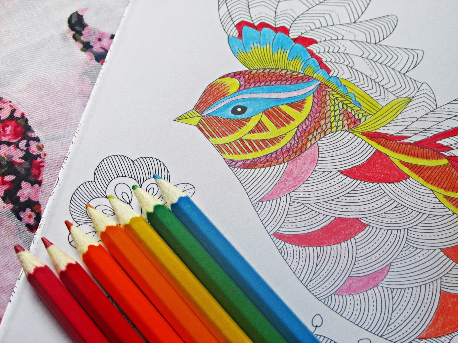 Millie Marottas Animal Kingdom Adult Colouring Book Review