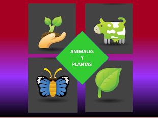 TRUCOS ANIMALES Y PLANTAS