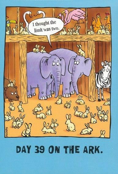 http://www.christianbook.com/bible-tales-birthday-cards-box-12/pd/37362X?p=1166543&bibletales