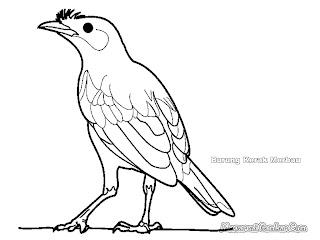 Mewarnai Gambar Burung Kerak Kerbau