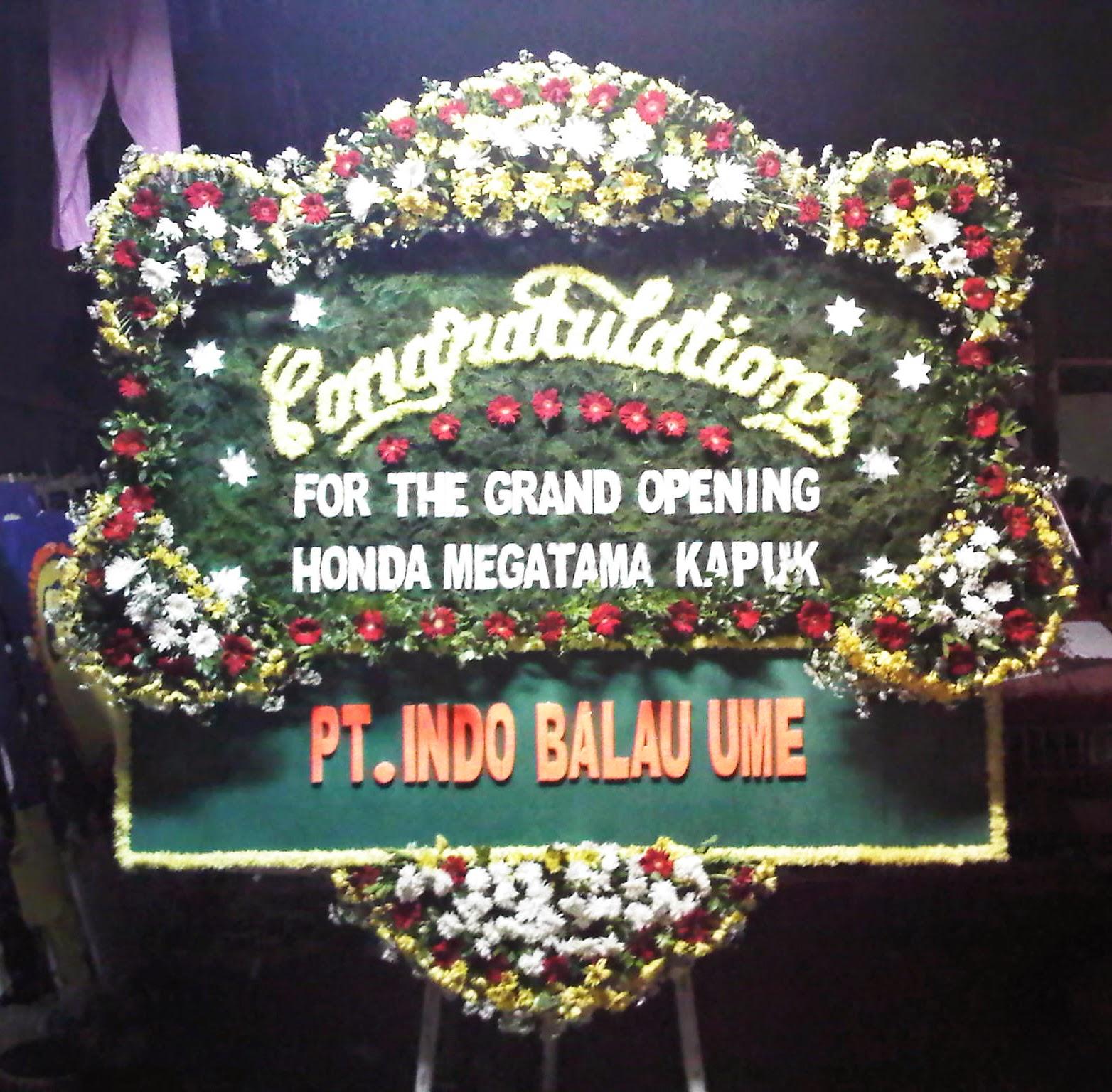 Congratulation (WS-066)