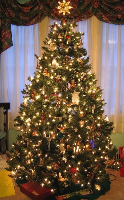 christmas origin saturnalia