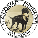 Flatcoated Retriever klubben