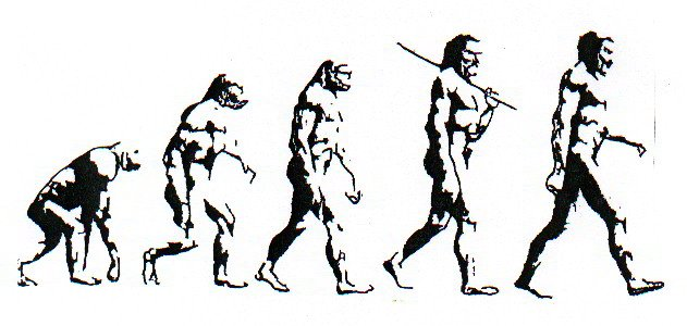 What is the most complete visual human evolution chart available ...