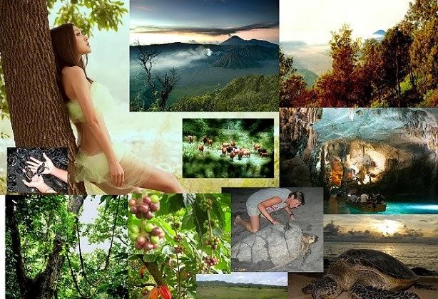 Mt Penanggungan, Malang, Sempu Island, Mt Bromo, Alas Purwo & Sukamade 7 Days 6 Nights Tour