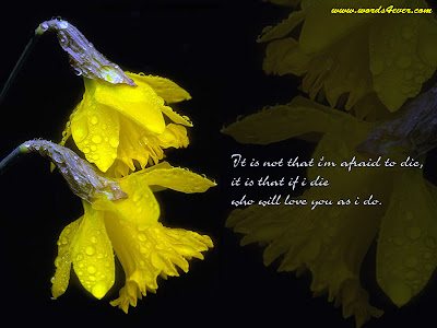 Beautiful Quotes with Flower Background