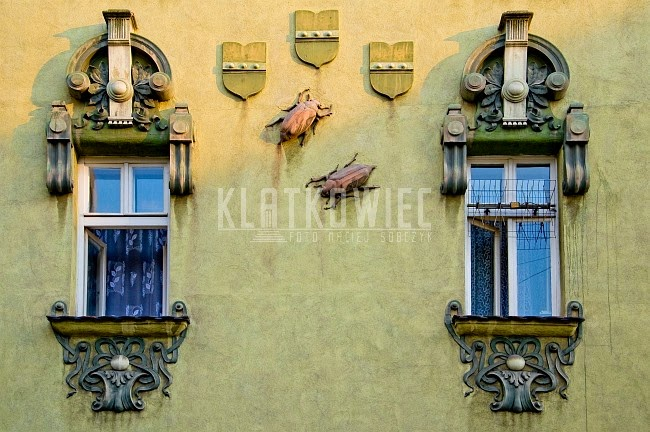 Bielsko-Biała: chrabąszcze na secesyjnej kamienicy