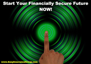 Professional Risk Management - FREE Financial Needs Analysis - FREE Personal Assistance - EasyInsuranceGroup.com