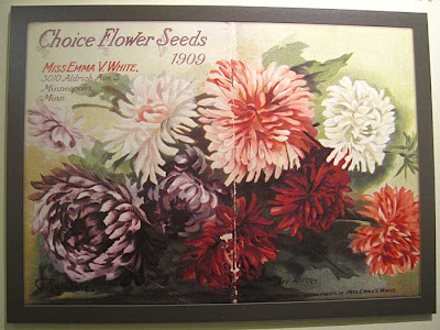 Litho of many colored asters