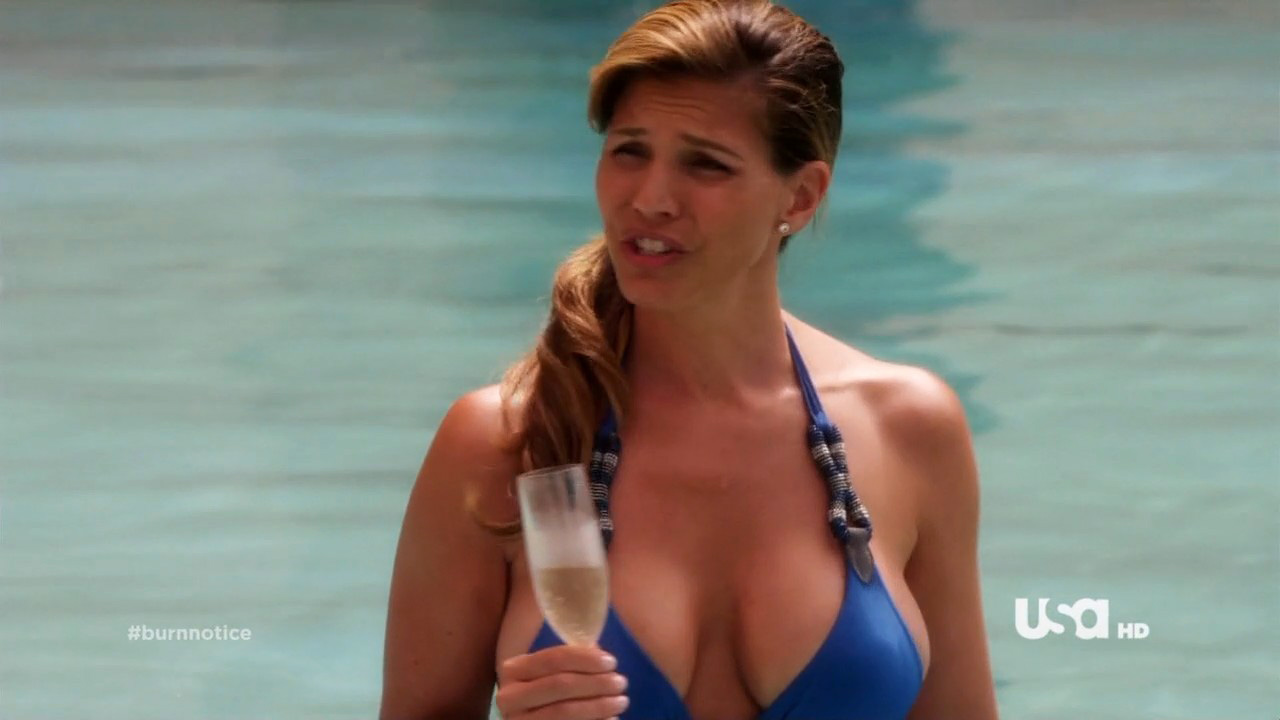 Hot females in burn notice rather valuable