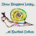Slow Blogger