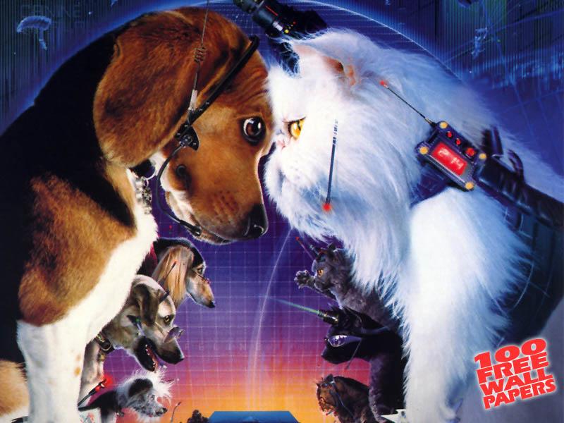 Dogs Vs Cats Movie Cast