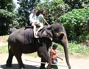 Riding-Elephants-In-Thailand
