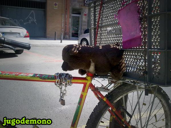 Sillín Osito de Peluche. Bicicleta encontrada en Murcia