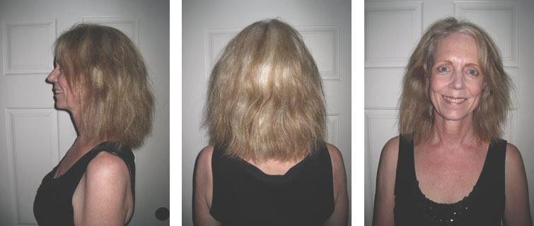 Brazilian Blowout Hair Dryer 41