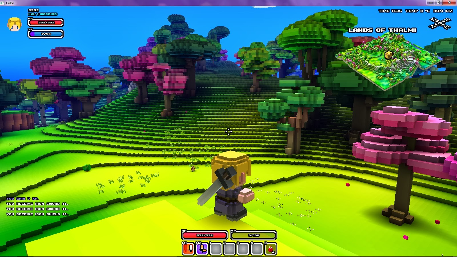 cube world pvp