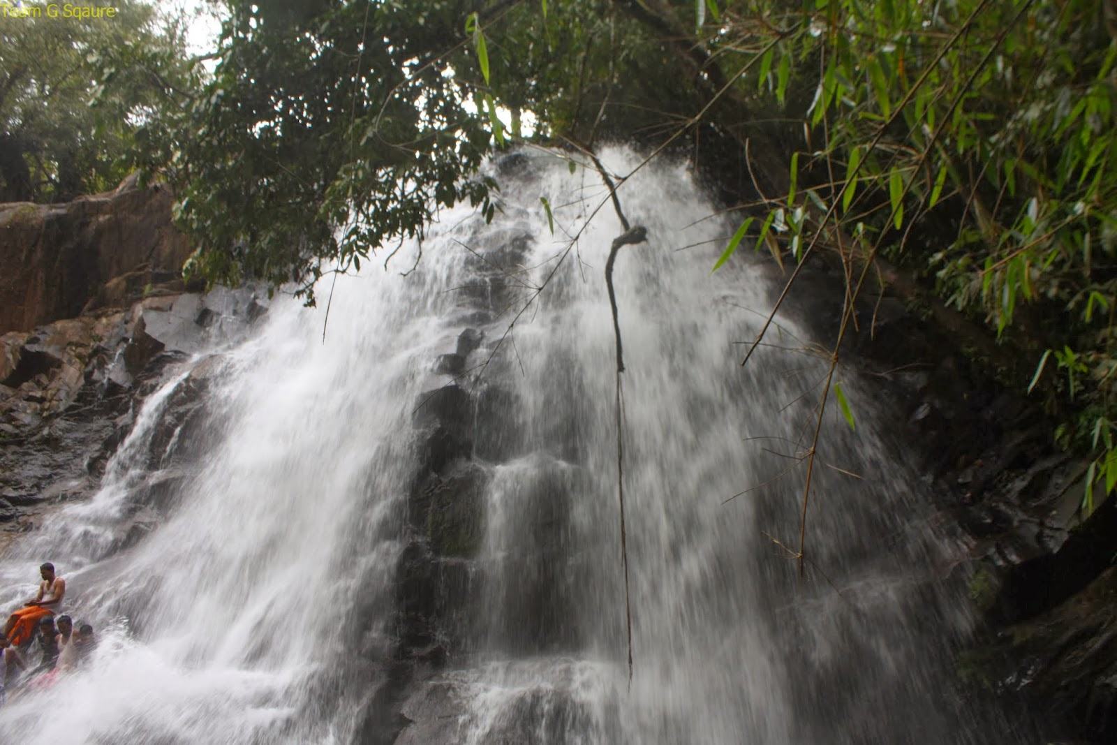 Sirimane Falls, Chikmagaluru