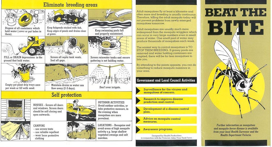 dengue control measures