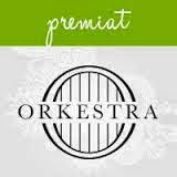 Concurs Summer Orkestra
