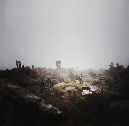 WRC Argentina - VikingBattle