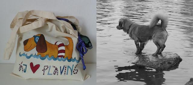 originální taška na bazén
