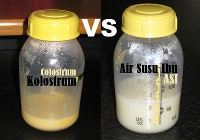 Perbedaan_Kolostrum_Colostrum_dengan_Air_Susu_Ibu_ASI_Biasa