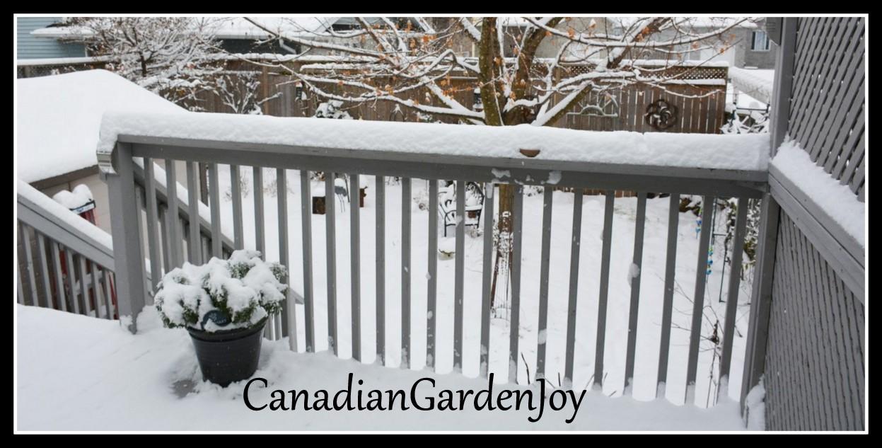 CanadianGardenJoy
