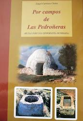 Por Campos de Las Pedroñeras