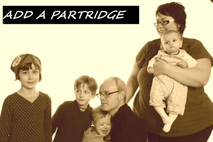Add A Partridge