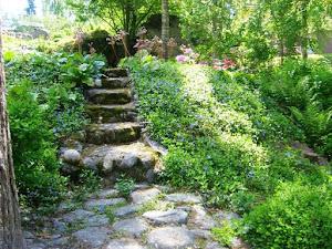 Kirstin puutarhassa