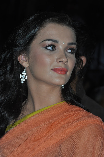 Actress Amy Jackson Saree Photos