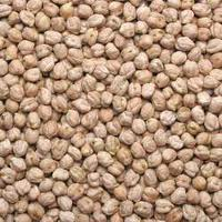 Chana Futures Trade Demand Gets Affected At Higher Levels