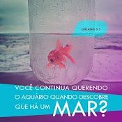 #HáMuitoMais