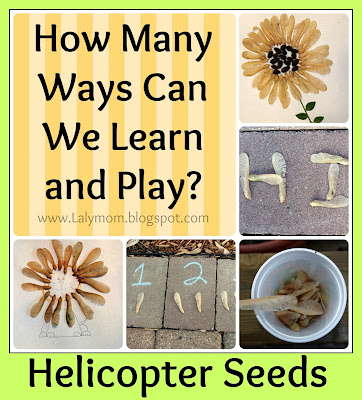 Kids activities using Helicopter Seeds or Maple Seeds or Whirleygigs from Lalymom