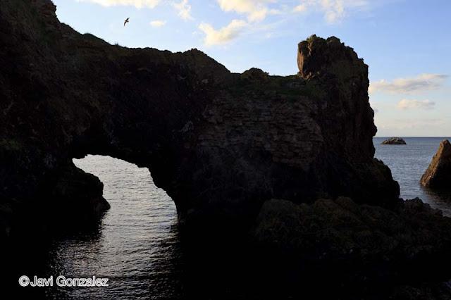 coast of Dunbar; Scotland