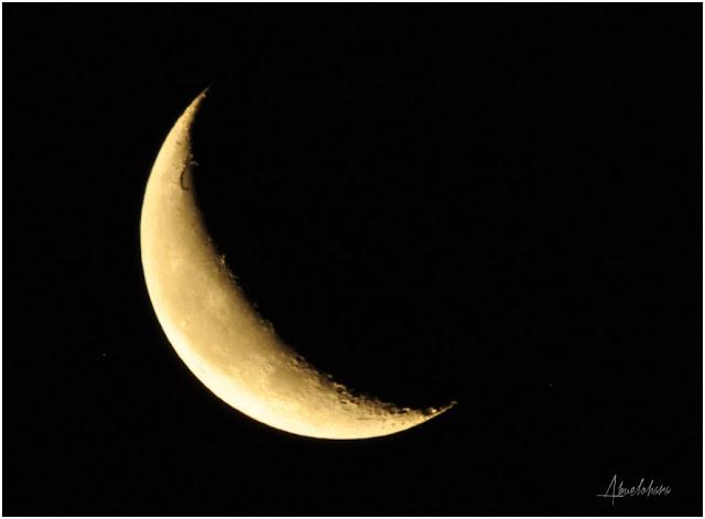Luna de julio. Abuelohara