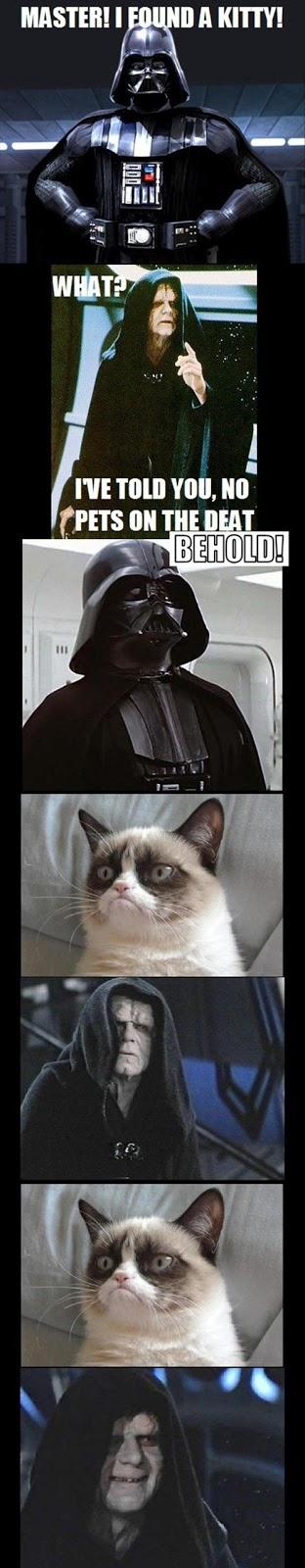 star wars grumpy cat - photo #16