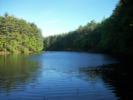 Frye Pond, Lorraine Park Campground, Harold Parker State Forest, Andover, Massachusetts