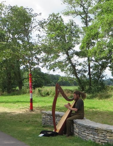 Another harpist in Cork and trees wrapped in scarfs