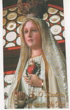 Nossa Senhora de Fátima nos proteja!