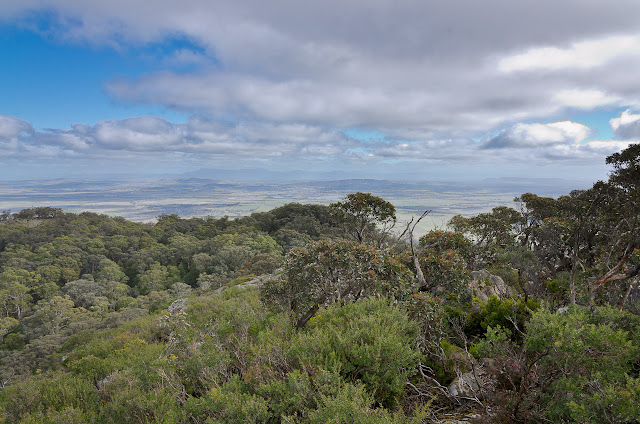 mt langi ghiran summit view