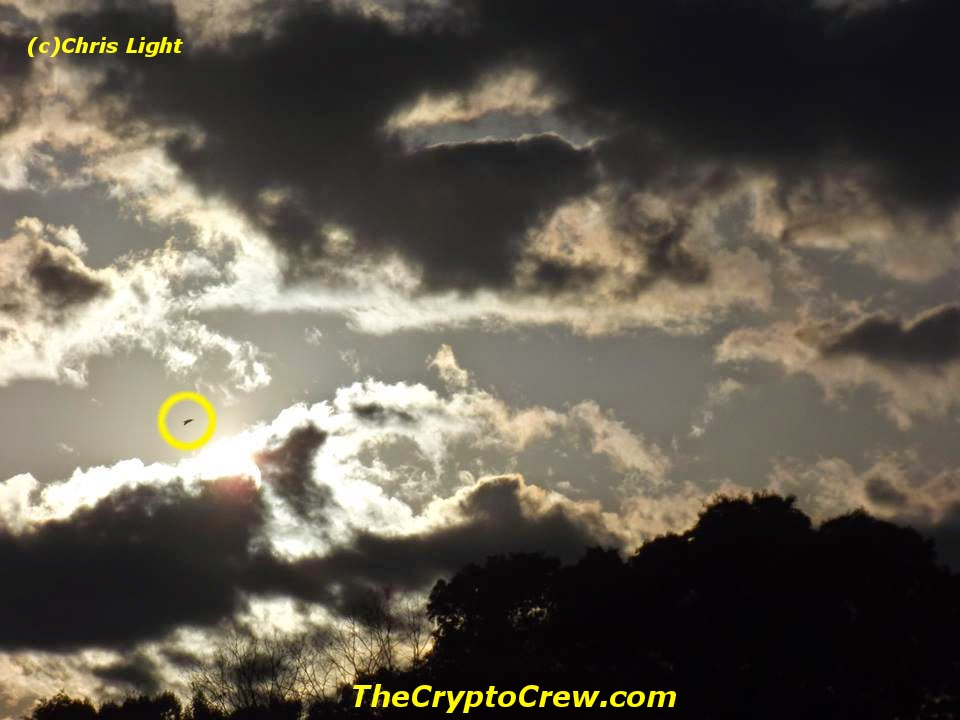 Possible UFO photographed
