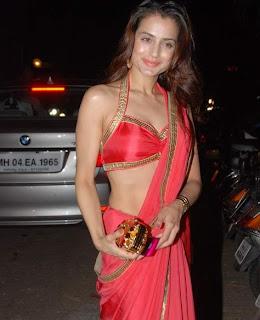 Amisha Patel in  hot