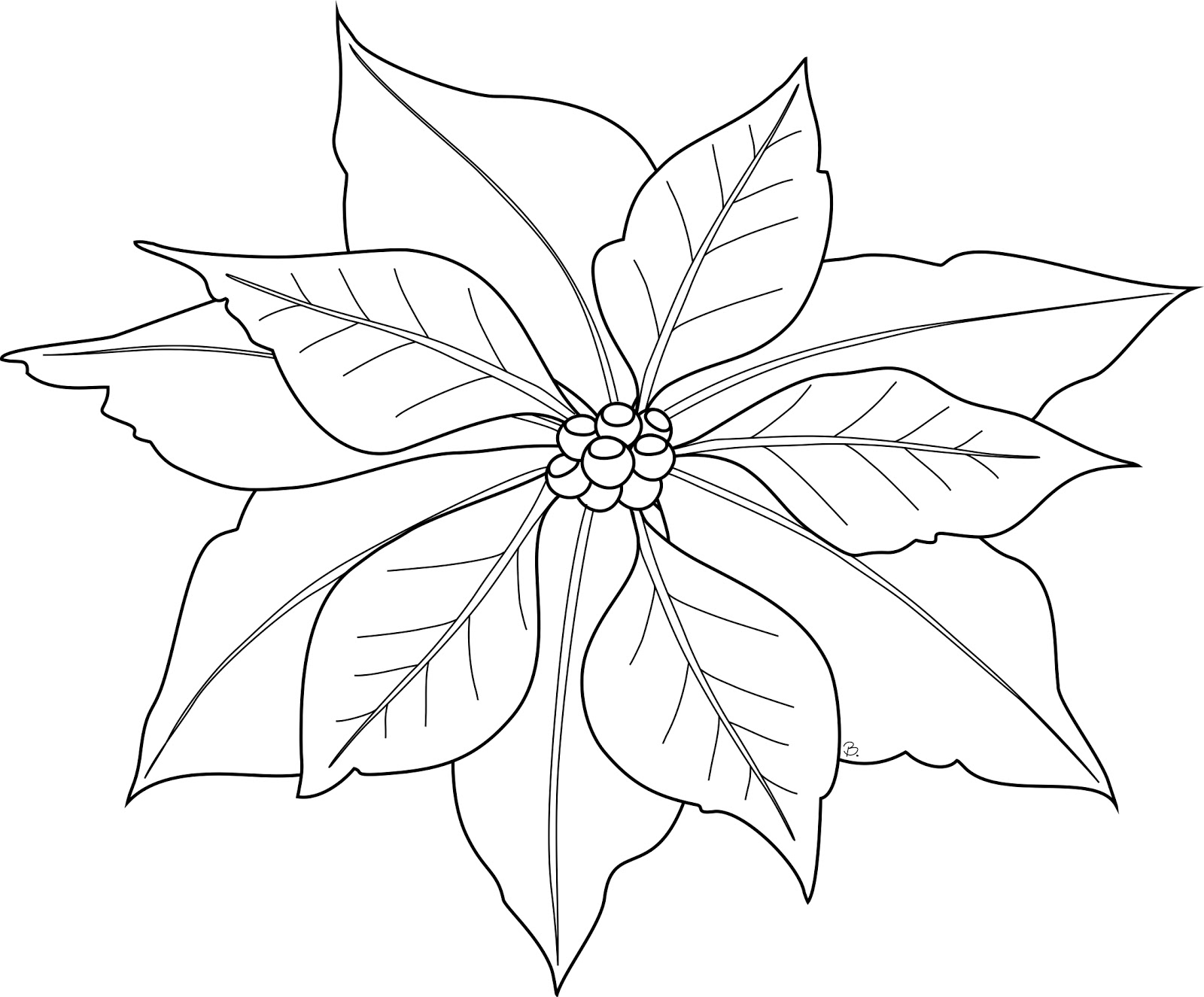 Christmas Poinsettia Coloring Coloring Pages