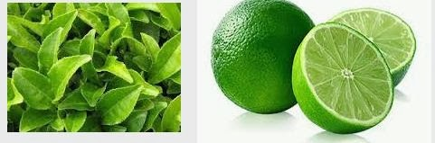 langsing dengan jeruk nipis dan teh hijau