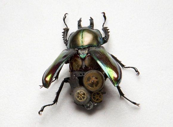Lindsey Bessanon Hadal-Art insertos mecanizados steampunk