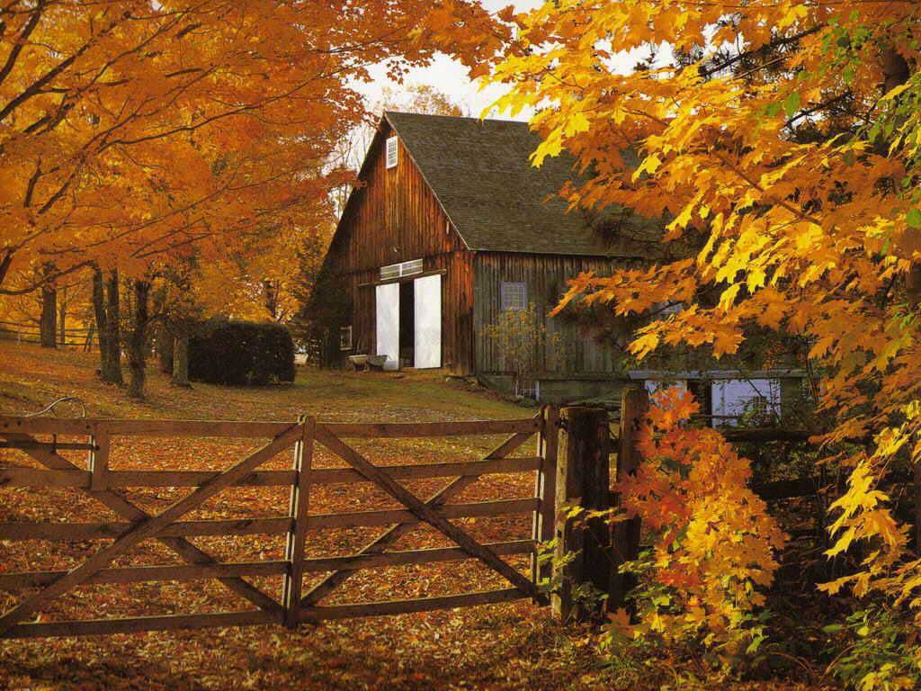 Beautiful nature pictures beautiful autumn barn